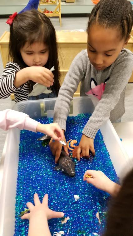 11 fun water play activities for preschoolers uda preschool blog